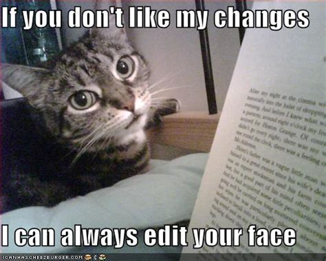 Meme Editing - very cute but funny cats p cats photo 29555583 fanpop