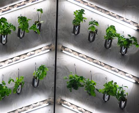 indoor hydroponic wall garden hydroponic wine bottle wall garden at student bar urban