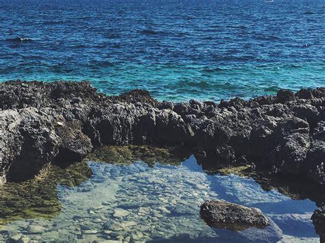 fico d india porto selvaggio parco naturale di porto selvaggio me piaci mare cct
