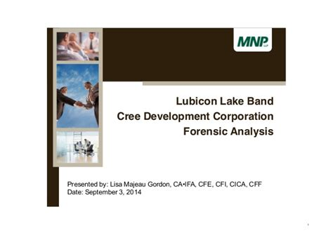 forensic audit into the cree development corporation and