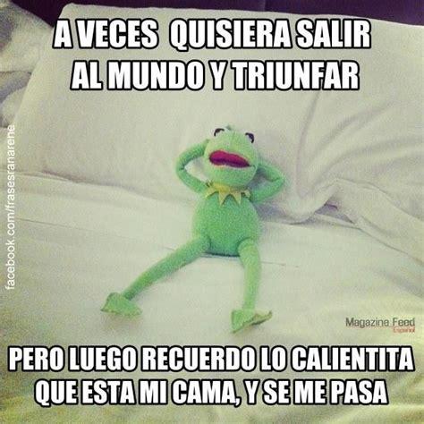 Memes De La Rana Rene - 17 mejores ideas sobre memes de la escuela en pinterest
