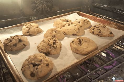 Oven Cookies baking cookies in oven www imgkid the image kid has it
