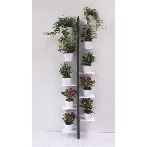 porta piante da interno portavasi da parete zia flora porta piante per interni