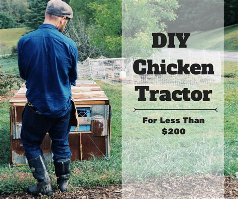 Diy chicken tractor for less than 200 abundant permaculture