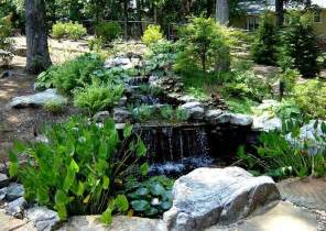 backyard pond plants backyard waterfall pond plants home