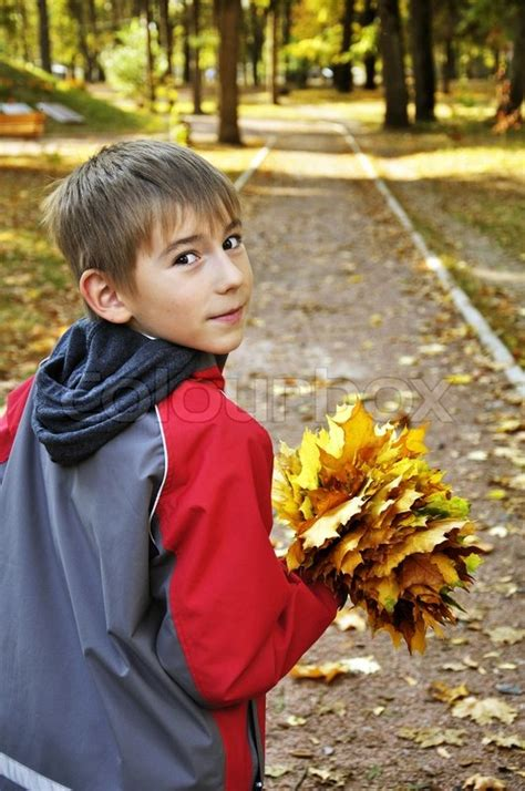 leaf boys model cute small boy with maple leaves in his hands in autumn