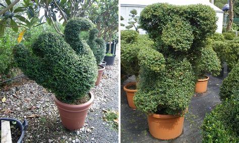 swan topiary topiary 4 living props
