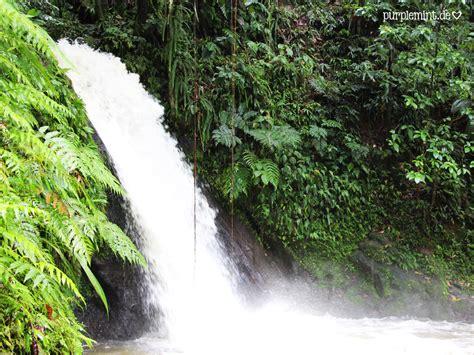 Zoologischer Garten Guadeloupe by Hochzeitsreise In Der Karibik Auf Der Aida Teil 3