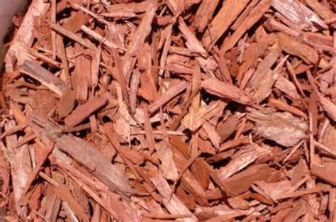 red mulch san diego red bark san diego red mulch for
