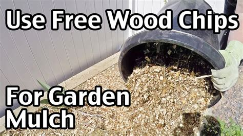 wood chips  garden mulch youtube