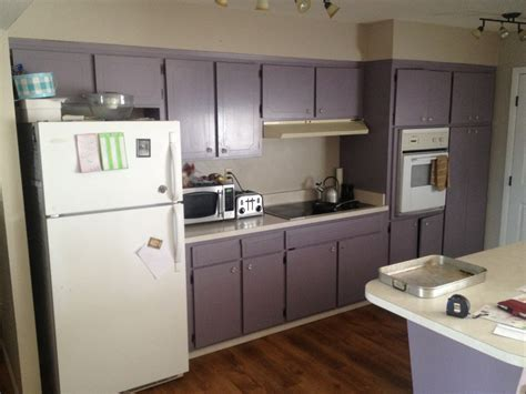 purple kitchen cabinets purple painted kitchen cabinets quicua com