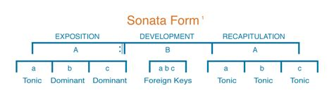 how many main sections make up the sonata form case study wolfgang amadeus mozart 2