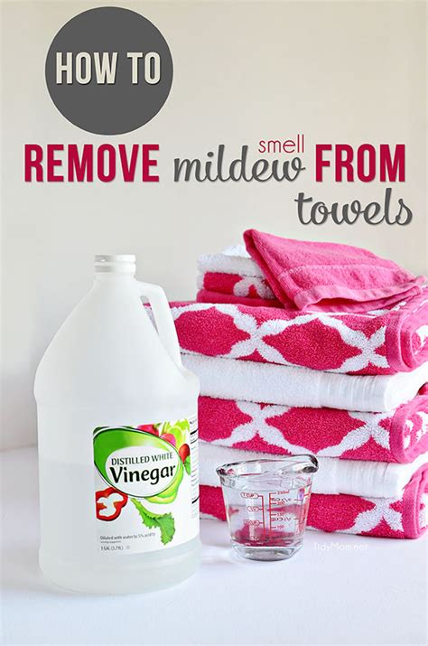 8 Ways To Remove Smell From Clothes by Prevent And Remove Mildew Smell From Clothes Tidymom