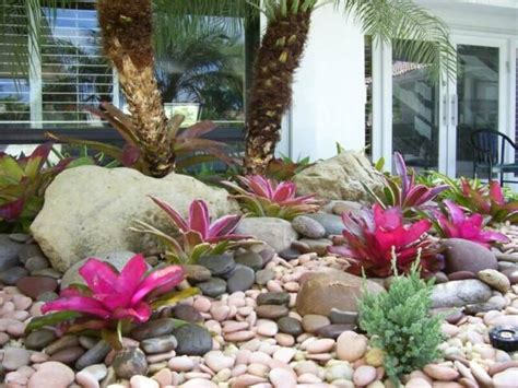 tropical backyard landscaping ideas tropical