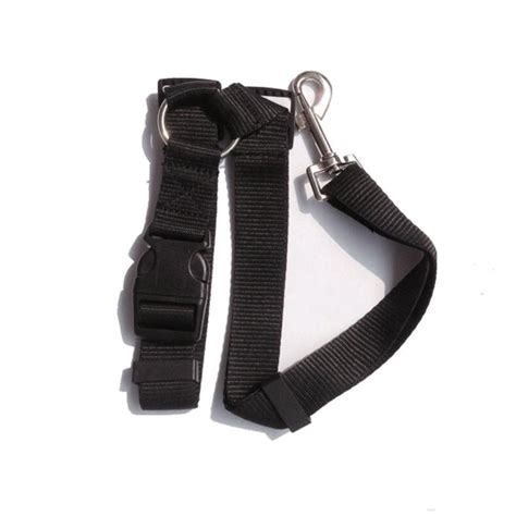 seat belts for dogs car seatbelt safety seat belt cat pet harness get free image about wiring diagram
