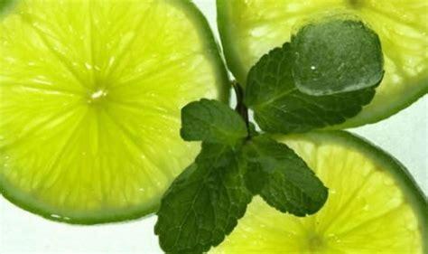 Minyak Atsiri Jeruk Nipis cegah batu ginjal dengan jeruk nipis