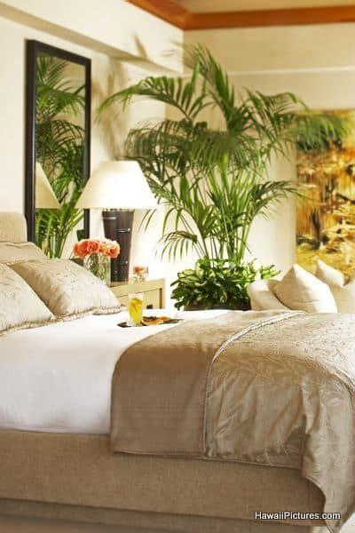 bedroom design trends  ideas    pictures