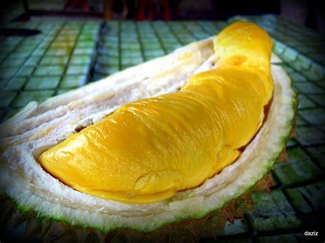 durianmusang king  favorite desserts  kue