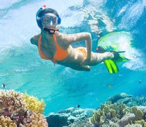 paradise boat tours coupon nassau snorkeling locations bahamas snorkeling tours