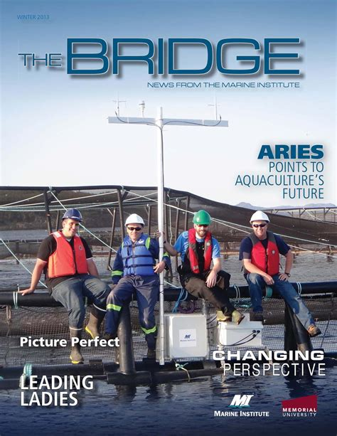 sw boat tours in new orleans 2013 bias boating winter product catalogue the bridge
