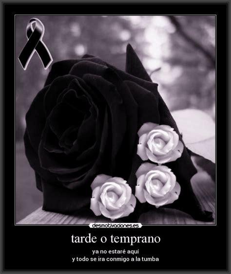 imagenes de luto para una niña fotos de duelo para descargar archivos fotos de luto