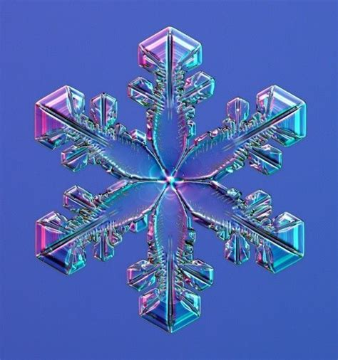 snowflake patterns real 22 best snowflake images on pinterest real snowflakes
