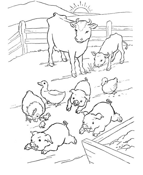 farm animal color pages coloring home