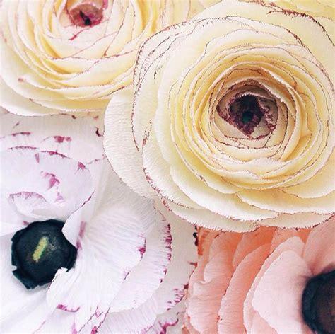 design on instagram 25 best ideas about instagram design on pinterest