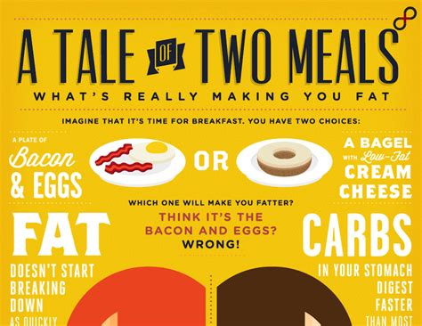 carbohydrates vs fats 11 best low carb diet infographics roundup