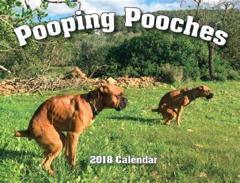 dogs pooping calendar 2018 pooping dogs calendar is here