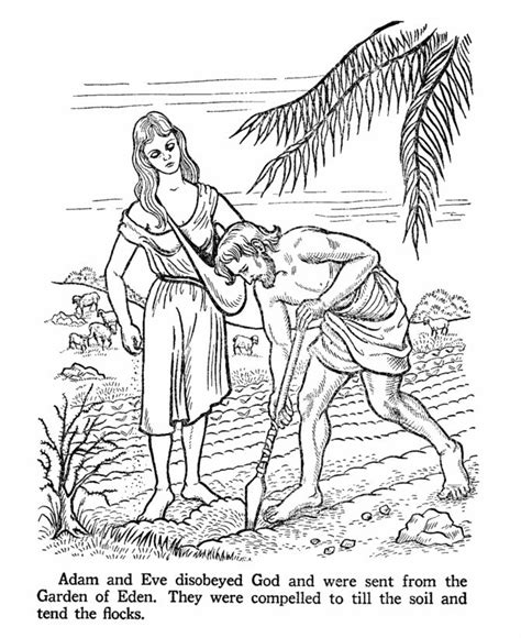 garden of eden printable activity sheets 399 best images about bible pictures on pinterest