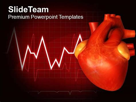 cardiac ppt template free cardiac powerpoint templates reboc info