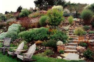 hillside landscaping ideas photos benny sam