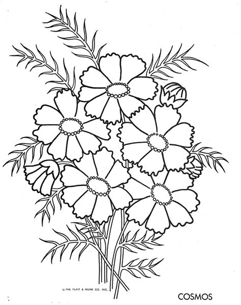 cosmos flower coloring page voltron coloring pages az coloring pages