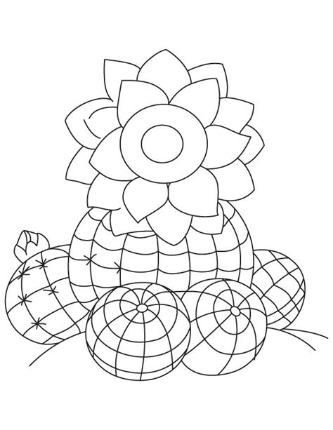 watermelon plant coloring page free watermelon plant coloring pages