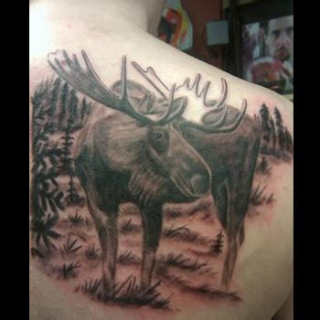 moose tattoos moose meanings itattoodesigns