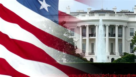 white house flag ecu tree branches and leaves american flag in the background in washington d c
