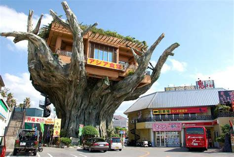 top 10 house designs in the world top 10 unique tree house designs in the world