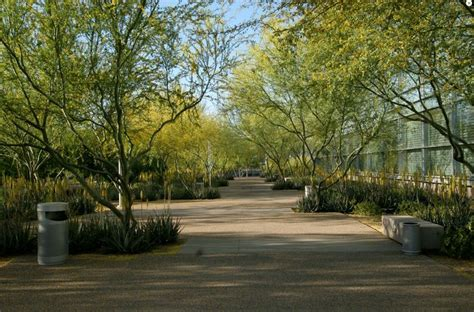 ten eyck landscape architects biodesign arizona city