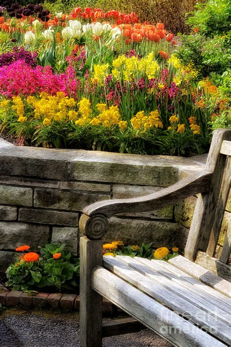 flower bed bench spring flower bed and bench photograph by julie palencia