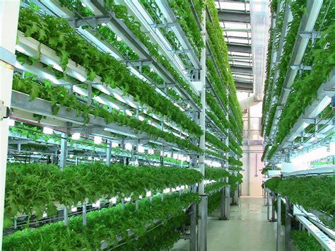 hydroponics aquaponics  aeroponics  young agropreneur