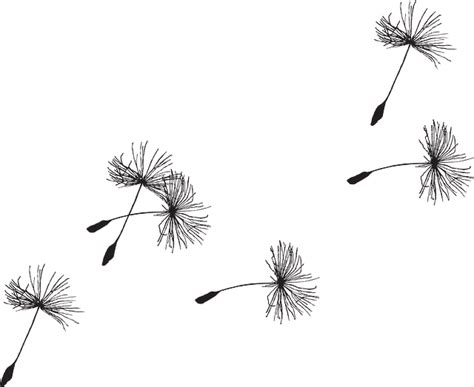dandelion seed tattoo free image on pixabay dandelion seed flora grass