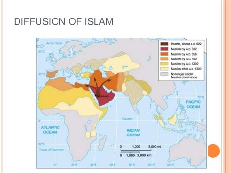 pattern of islamic fundamentalism lecture 7 tourism in the middle east and north africa