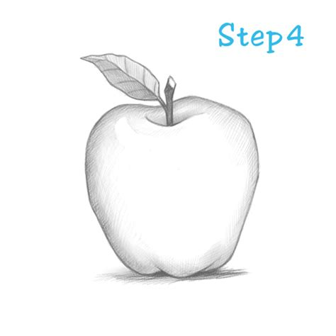 apple drawing how to draw an apple beginning sketch2draw com