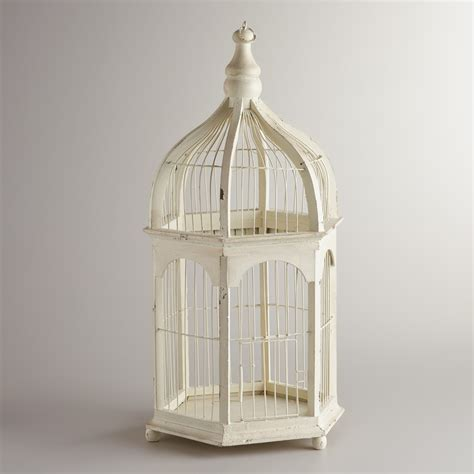 birdcages a hot decorative trend