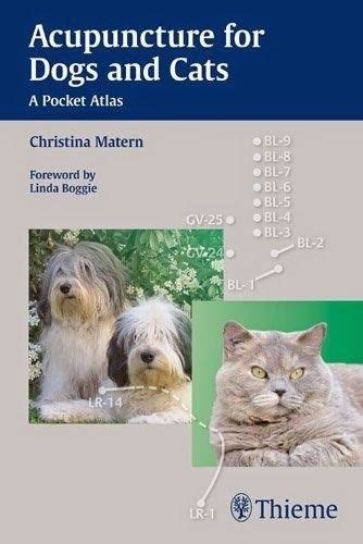 acupuncture for dogs the world s catalog of ideas