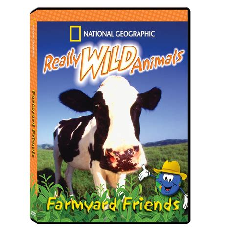 really wild animals swinging safari really wild animals farmyard friends dvd national