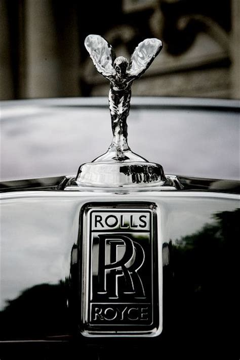 rolls royce logo 115 best images about rolls royce spirit of ecstasy on