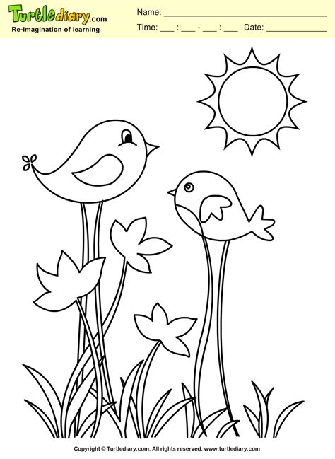 bird coloring page bird coloring sheet turtle diary