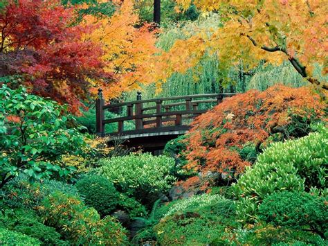 imagenes de jardines japoneses fotos de fotos jardines japoneses